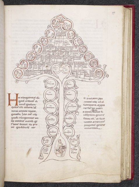 Tree of consanguinity from BL Harley 3099, f. 77
