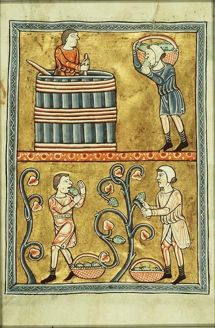 September: men picking and treading grapes