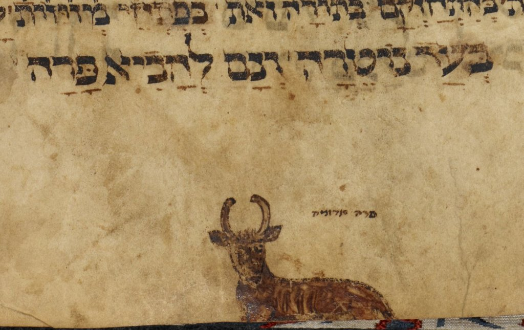 Red heifer from BL Add 10456, f. 28v