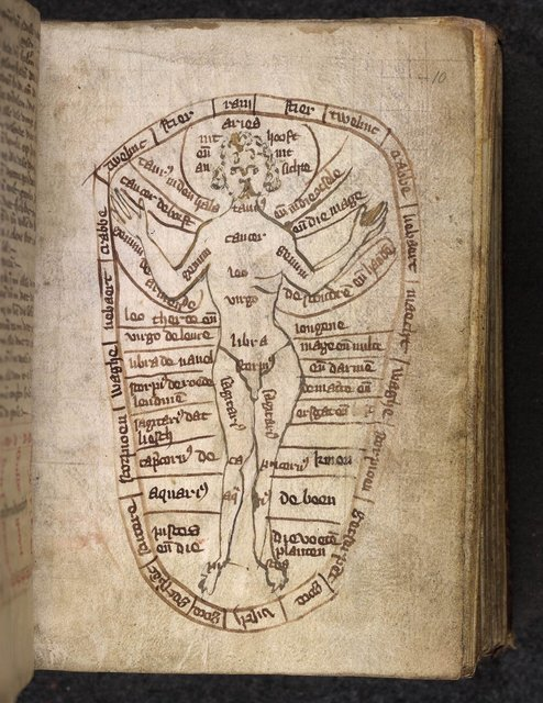 Zodiac man from BL Eg 2188, f. 10
