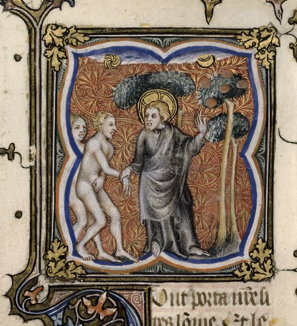 Tree of Knowledge from BL Royal 17 E VII, f. 7