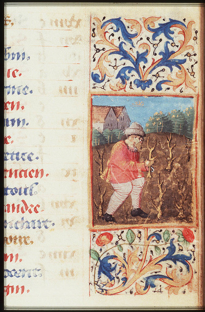 March: a man pruning