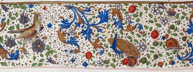 Birds and snails from BL Royal 15 E III, f. 67v