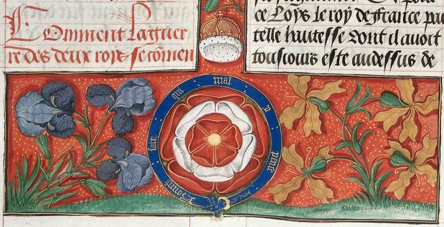Tudor rose from BL Royal 20 E III, f. 30v