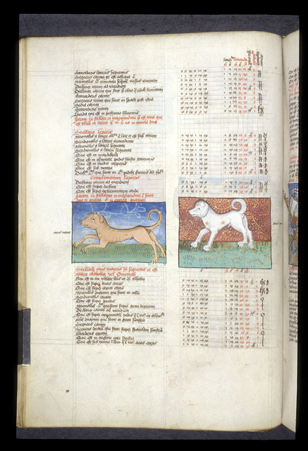 Canis Maior and Canis Minor from BL Arundel 66, f. 44v