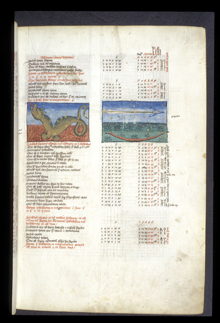 Serpens Alange and Sagitta (Arrow and bow) from BL Arundel 66, f. 37