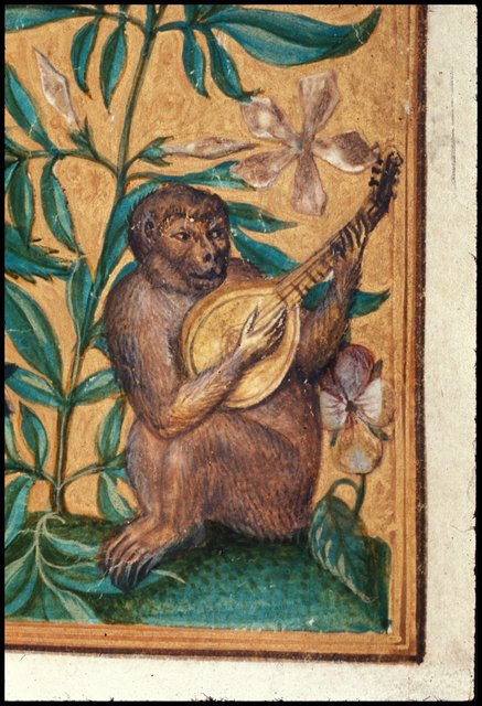 A monkey playing a lute from BL Harley 3469, f. 2