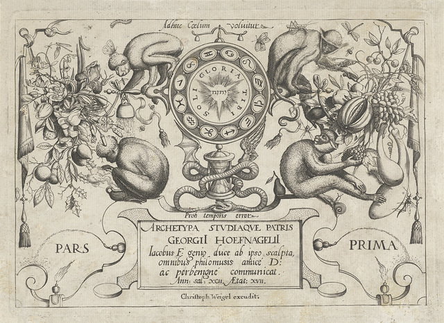 Apen, planten en vruchten rond de tekens van de zodiac