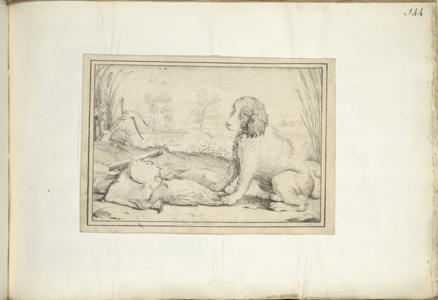 Hond naast jachtuitrusting en buit in landschap