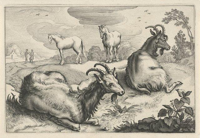 Landschap met twee geiten en twee paarden