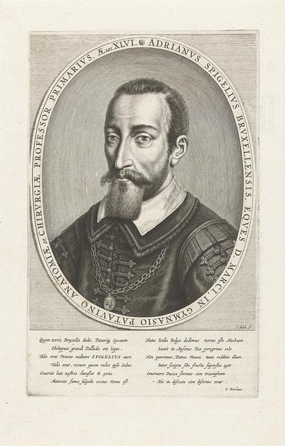 Portret van Adriaan van den Spiegel