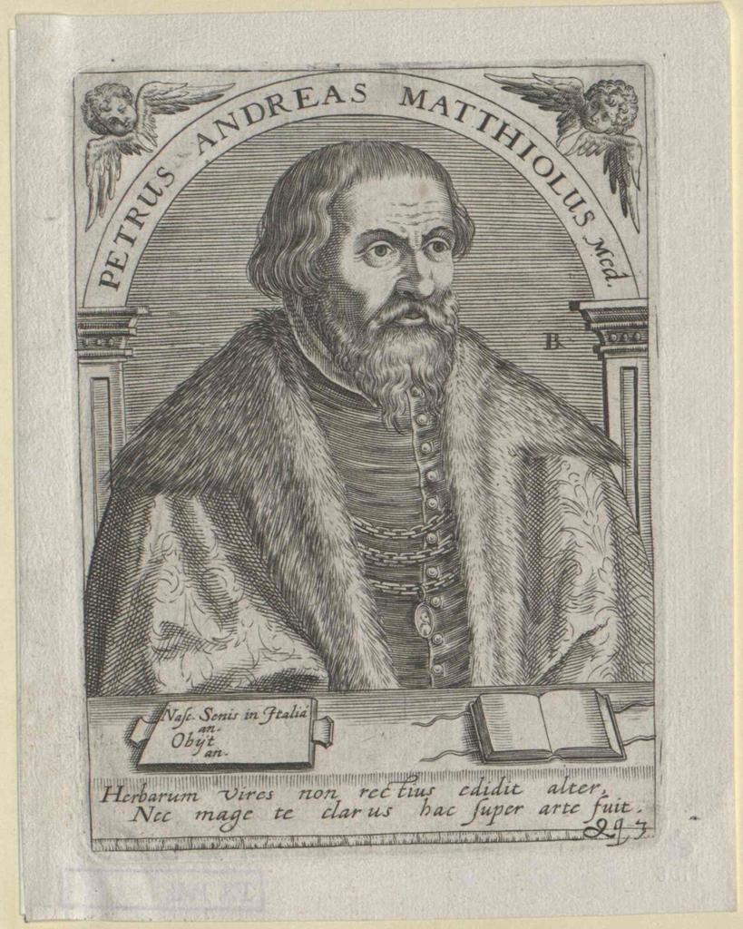 Mattioli, Pietro Andrea