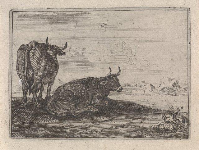 Twee koeien in een landschap
