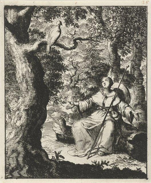 Vrouwelijke pelgrim ziet in het bos een tortelduif