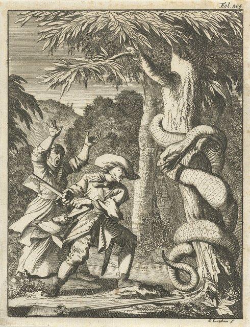 Reuzenslang, om een boom gekronkeld, door een man met bijl aangevallen