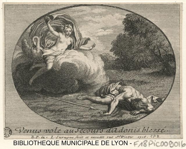 Vénus vole au secours d'Adonis blessé