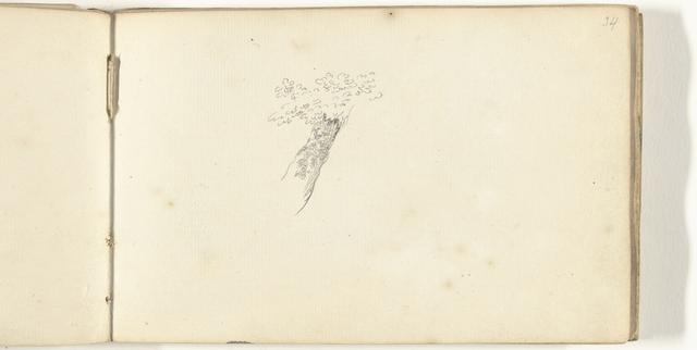 Schets van boom