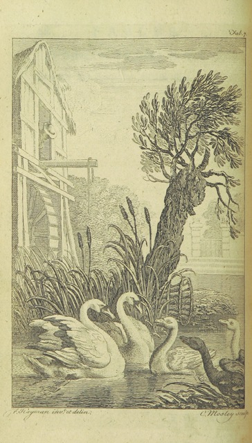 """mill from """"[Fables for the Female Sex. [By Edward Moore and Henry Brooke. In verse. With engravings after F. Hayman.]]"""""""