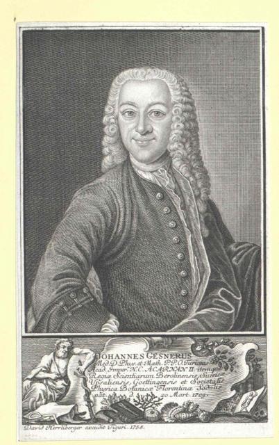 Gesner, Johann