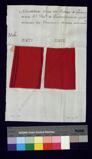 Muestras de las dos Piezas de Grana de esta R[ea]l Fab[ric]a de Guadalaxara que tiñeron los tintoreros de ella ultimam[en]te [Objeto tridimensional]