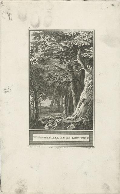 Nachtegaal en een leeuwerik in het bos