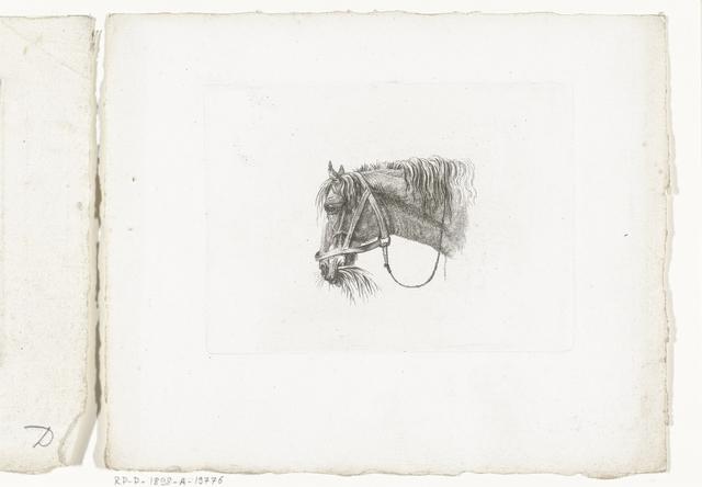Paardenhoofd met stro in de bek, naar links