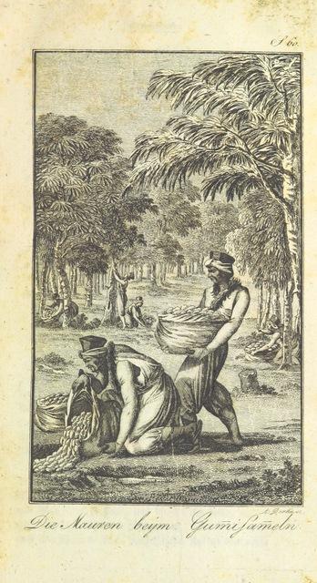 """portrait from """"J. B. L. D.'s ... Reise nach den Senegal-Ländern in einem gedrängten Auszuge. Nebst Lamiral's Wasser- und Rubault's Landreise nach Galam. Mit 2 Kupfern und einer Karte.-G. Lajaille's Reise nach Senegal in den Jahren 1784 und 1787. Uebersetzt von M. C. Sprengel. Mit einer Karte.-P. Labarthe's Reise nach der Küste von Guinea. Aus dem Französischen in einem gedrängten Auszuge übersetzt von F. F. Ehrmann. Mit einer Karte"""""""