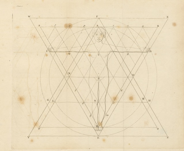 "diagram from ""Homographia; an essay on the proportions of man's body, hitherto unknown, or undescribed ... With an appendix on the monuments of the ancients, etc"""