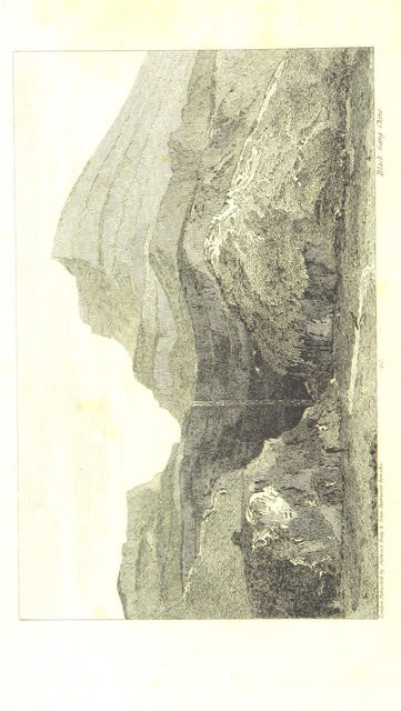 """Nature from """"[A new picture of the Isle of Wight, illustrated with twenty-six plates ... in imitation of the original sketches, drawn and engraved by W. Cooke ... Second edition, with improvements.]"""""""