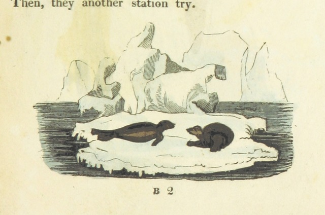 """Wildlife from """"[A Peep at the Esquimaux; or, scenes on the ice. To which is annexed, a Polar Pastoral [in verse], with forty coloured plates ... By a Lady.]"""""""