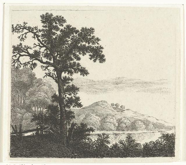 Landschap met boom bij een rivieroever