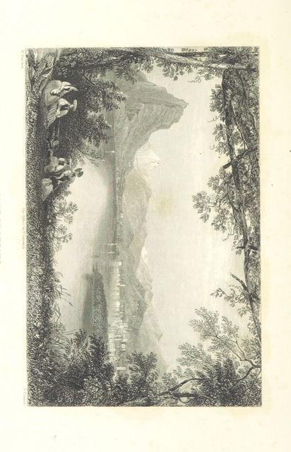 """upside-down from """"Switzerland. Illustrated in a series of views taken expressly for this work by W. H. Bartlett. [With a map.]"""""""