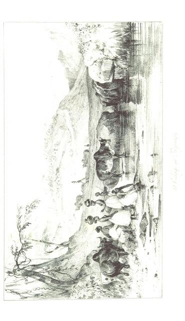 """rotate-image from """"Voyage à Madagascar et aux Iles Comores (1823 à 1830), précédé d'une notice historique et géographique sur Madagascar par M. E. de Froberville ... Avec un atlas et huit vues et costumes dessinés par V. Adam et deux cartes géographiques"""""""
