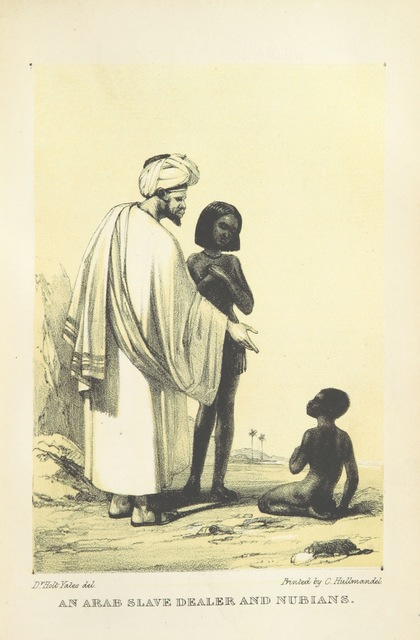 """Arab from """"The modern History and Condition of Egypt, its climate, diseases, and capabilities, etc., exhibited in a personal narrative of travels in that country"""""""
