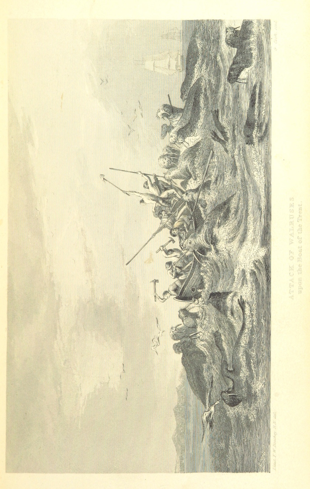 """hunters from """"A Voyage of Discovery towards the North Pole, performed in His Majesty's Ships Dorothea and Trent, under the command of Capt. David Buchan, R.N., 1818; to which is added, a summary of all the early attempts to reach the Pacific by way of the Pole. [With plates.]"""""""