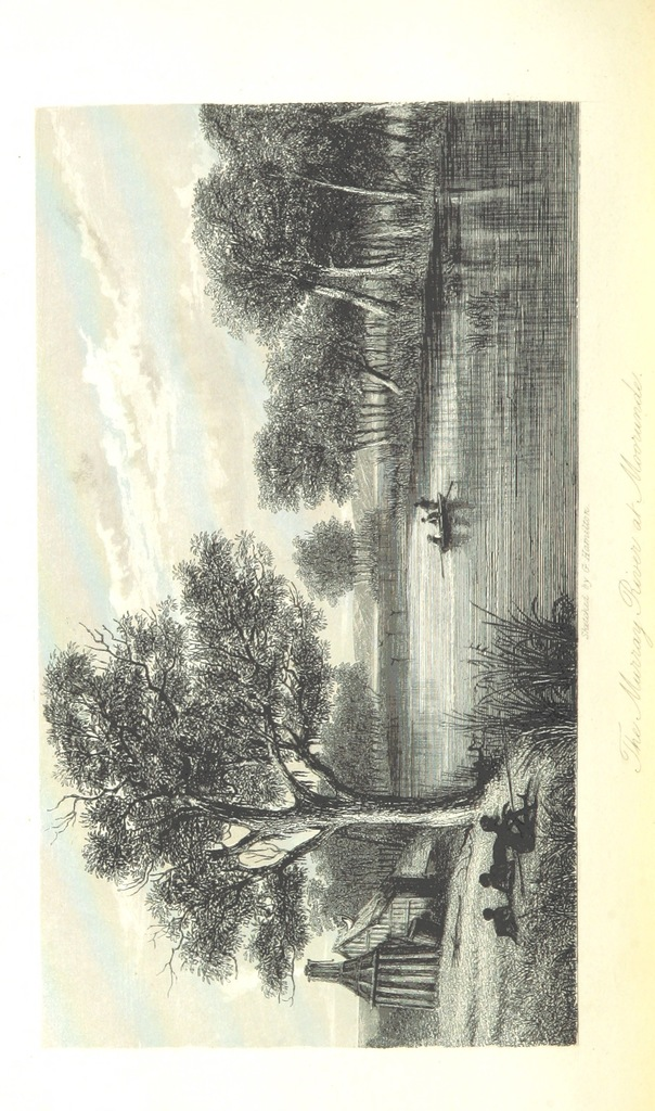 """Murray River from """"Journals of Expeditions of discovery into Central Australia, and overland from Adelaide to King George's Sound, in 1840-1, including an account of the manners and customs of the Aborigines, and the state of their relations with Europeans"""""""