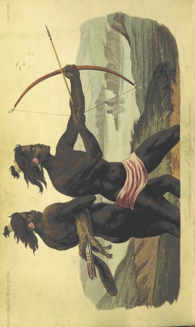 """Native_American from """"[The Natural History of Man; comprising inquiries into the modifying influence of physical and moral agencies of the different tribes of the human family.]"""""""