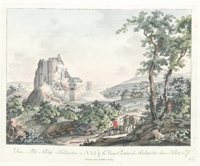 Das alte Schloss Lichtenstein in N. Oe. Le viey Chateau de Lichtenstein dans l'Autr. inf.