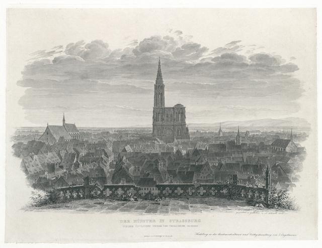 Das Münster in Strassburg von dem östlichen Thurme der Thomas-Kirche gesehen
