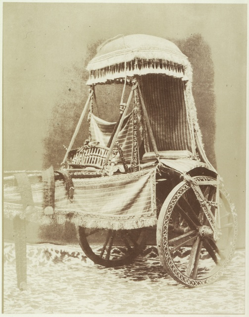 Buffalo Carriage. India