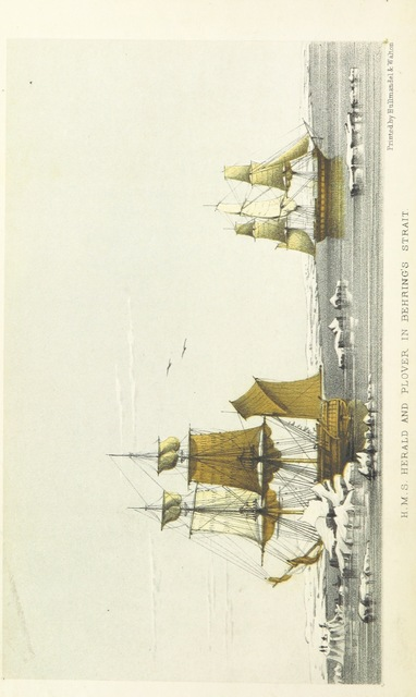 """ship from """"Narrative of the Voyage of H.M.S. Herald during the years 1845-51, under the command of Captain H. Kellett ... being a circumnavigation of the globe, and three cruises to the Arctic Regions in search of Sir J. Franklin"""""""