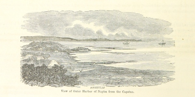 """nature from """"Narrative of the Expedition of an American Squadron to the China Seas and Japan, performed in the years 1852, 1853 and 1854, under the command of Commodore M. C. Perry ... by order of the Government of the United States. Compiled from the original notes and journals of Commodore Perry and his officers ... by F. L. Hawks, etc. [With plates, including maps.]"""""""