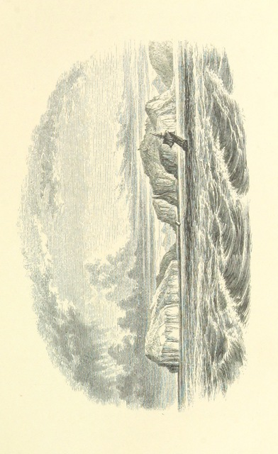 "scanned image from ""The Cruise of the Beacon: a narrative of a visit to the Islands in Bass's Straits"""