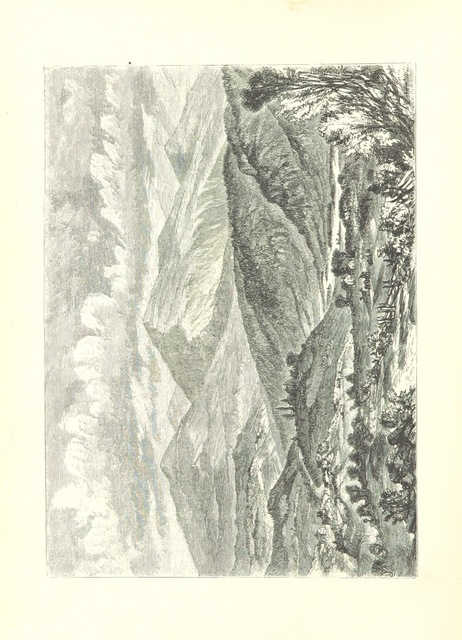 """Nature from """"The White Hills; their legends, landscape, and poetry. With sixty illustrations engraved by Andrew, from drawings by Wheelock. F.P"""""""