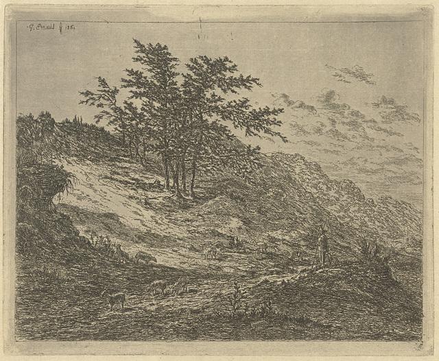 Schaapsherder in heuvelachtig heidelandschap