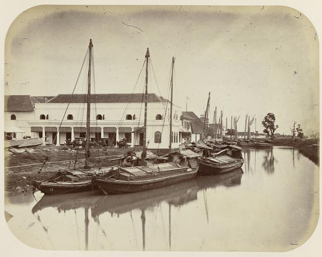Groote Boom aan het Havenkanaal te Batavia