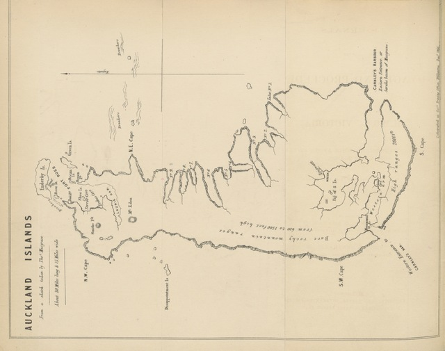 """map from """"Journals of the Voyage and Proceedings of H.M.C.S. """"Victoria"""" in search of ship-wrecked people at the Auckland and other Islands. ... Compiled by ... W. H. N. and T. Musgrave"""""""