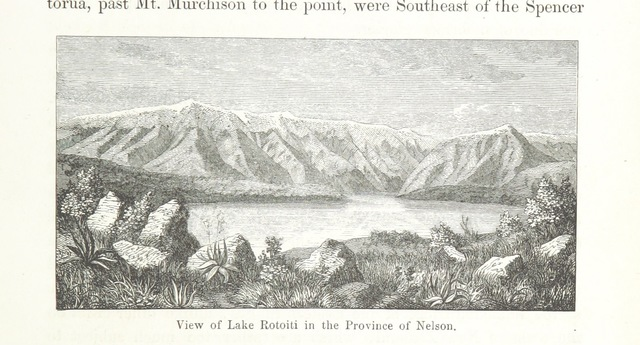 """Nelson from """"New Zealand, its physical geography, geology and natural history, with special reference to the results of Government Expeditions in the provinces of Auckland and Nelson ... Translated from the German original ... by E. Sauter ... With additions ... by the author. Illustrated, etc"""""""