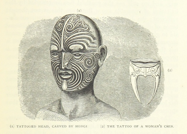 "tattoo from ""[Te Ika a Maui, or, New Zealand and its Inhabitants ... Second edition, etc.]"""