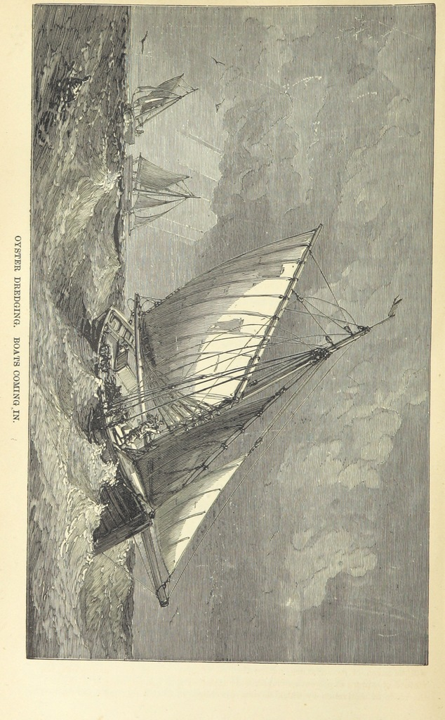 """boat from """"Beeton's Historical Romances, Daring Deeds, and Animal Stories. Illustrated, etc"""""""